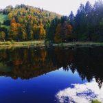 France-Vosges-Goyav-automne