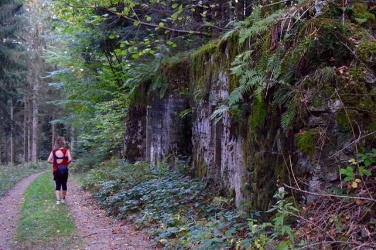 France-vosges-Goyav-bunker