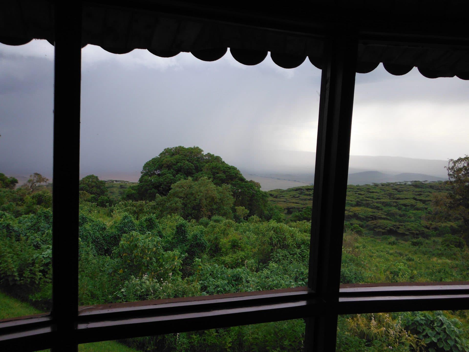 tanzanie-Ngorongoro-goyav road trip afrique