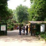 france-Lille-zoo-goyav