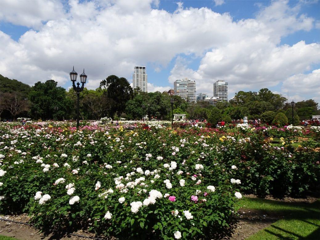 Voyage à Buenos Aires el rosedal