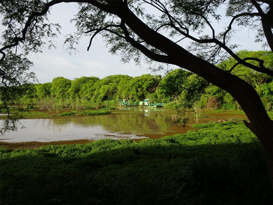 reserve-ecologique-goyav