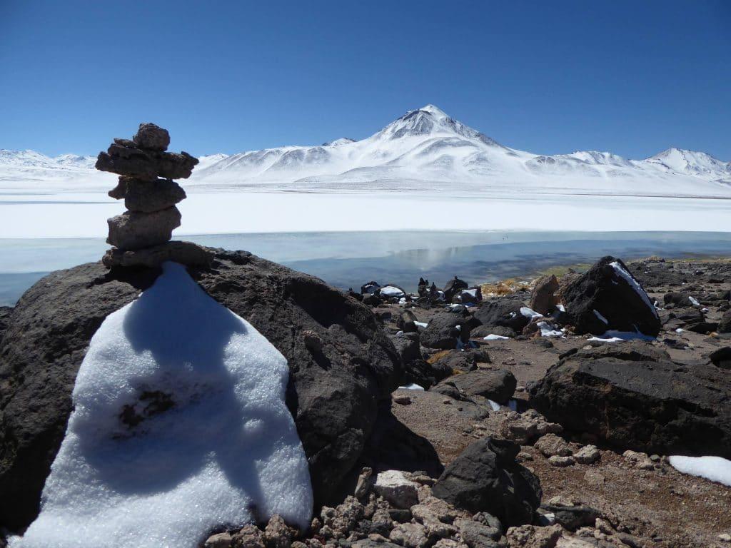 bolivie-Reserve-Nationale-de-faune-andine-Eduardo-Avaroa-goyav