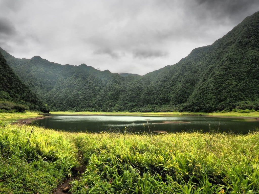 Randonnée facile à La Réunion : Grand Etang