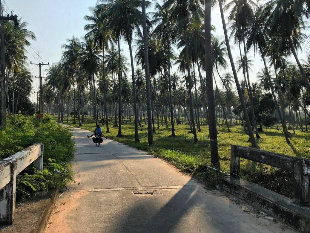 roadtrip-velo-thailande-goyav