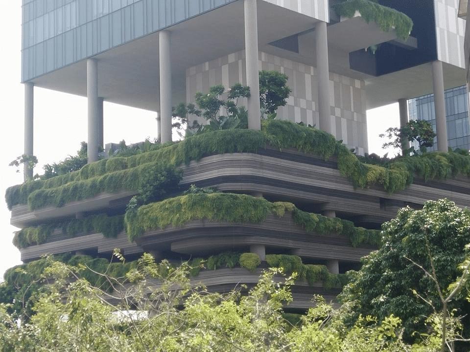 Singapour, écrin de verdure
