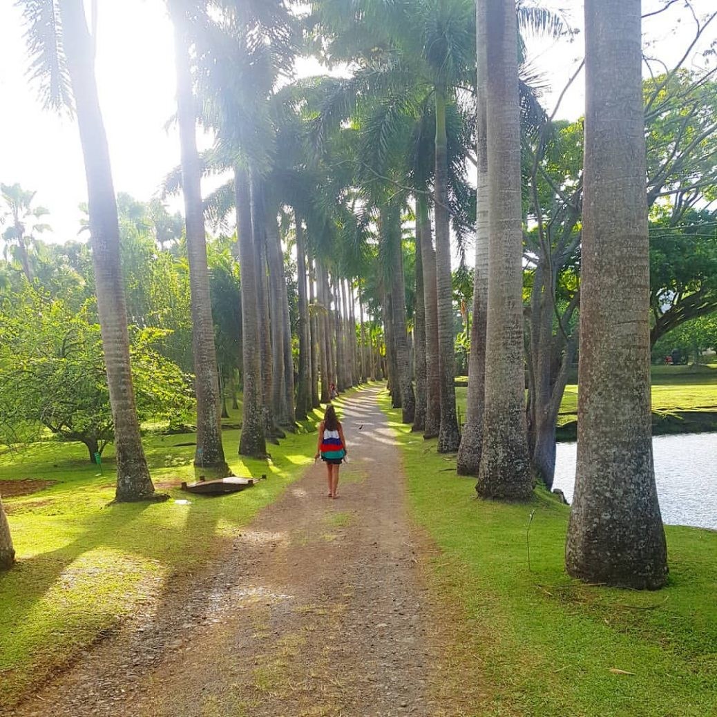 Escale en Martinique