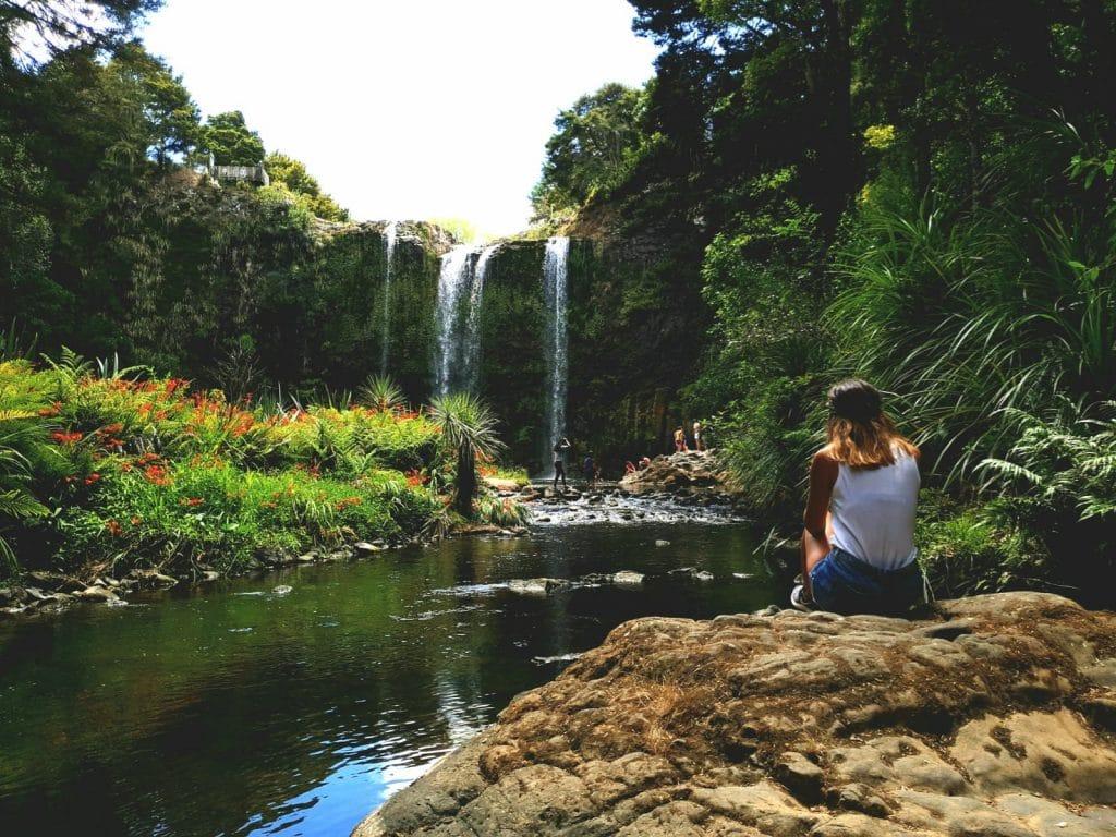 Whangarei Falls Nouvelle Zélande