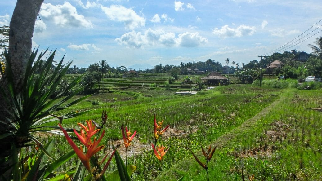 Ubud villages bali