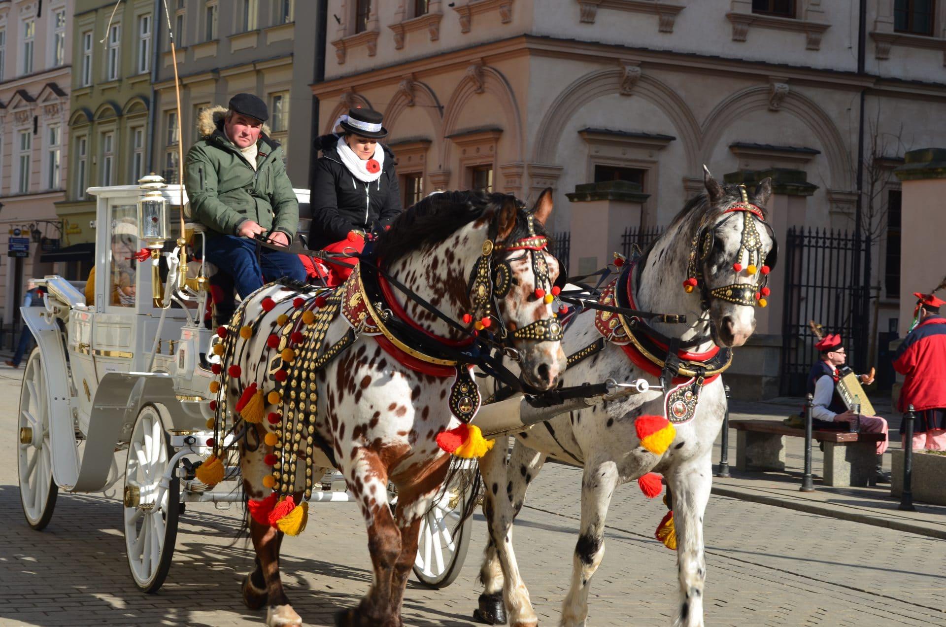calèche à Cracovie en Pologne