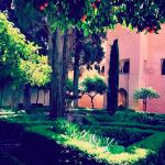 jardins de Daraxa alhambra