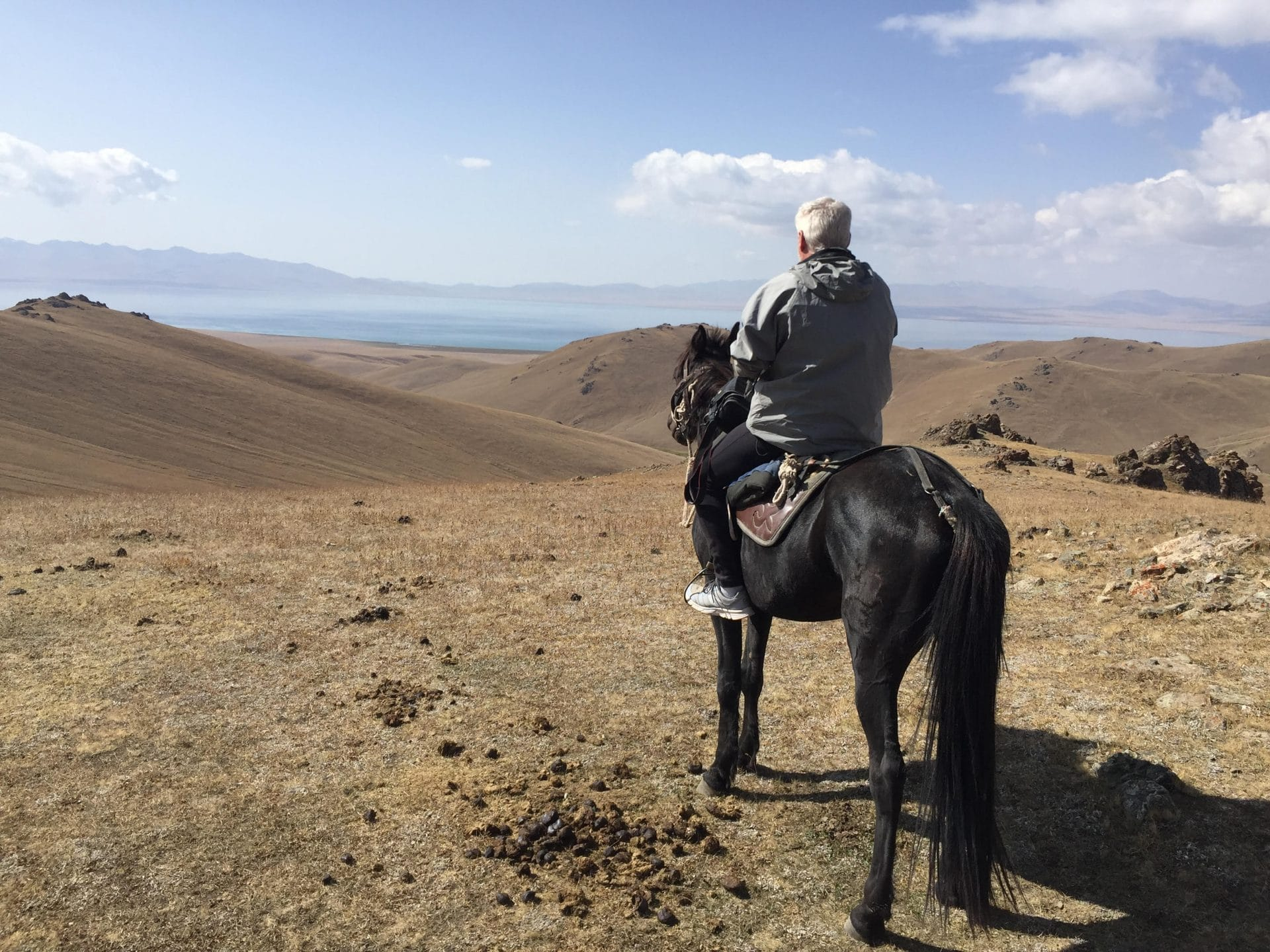 cheval à SONG KOUL LAKE