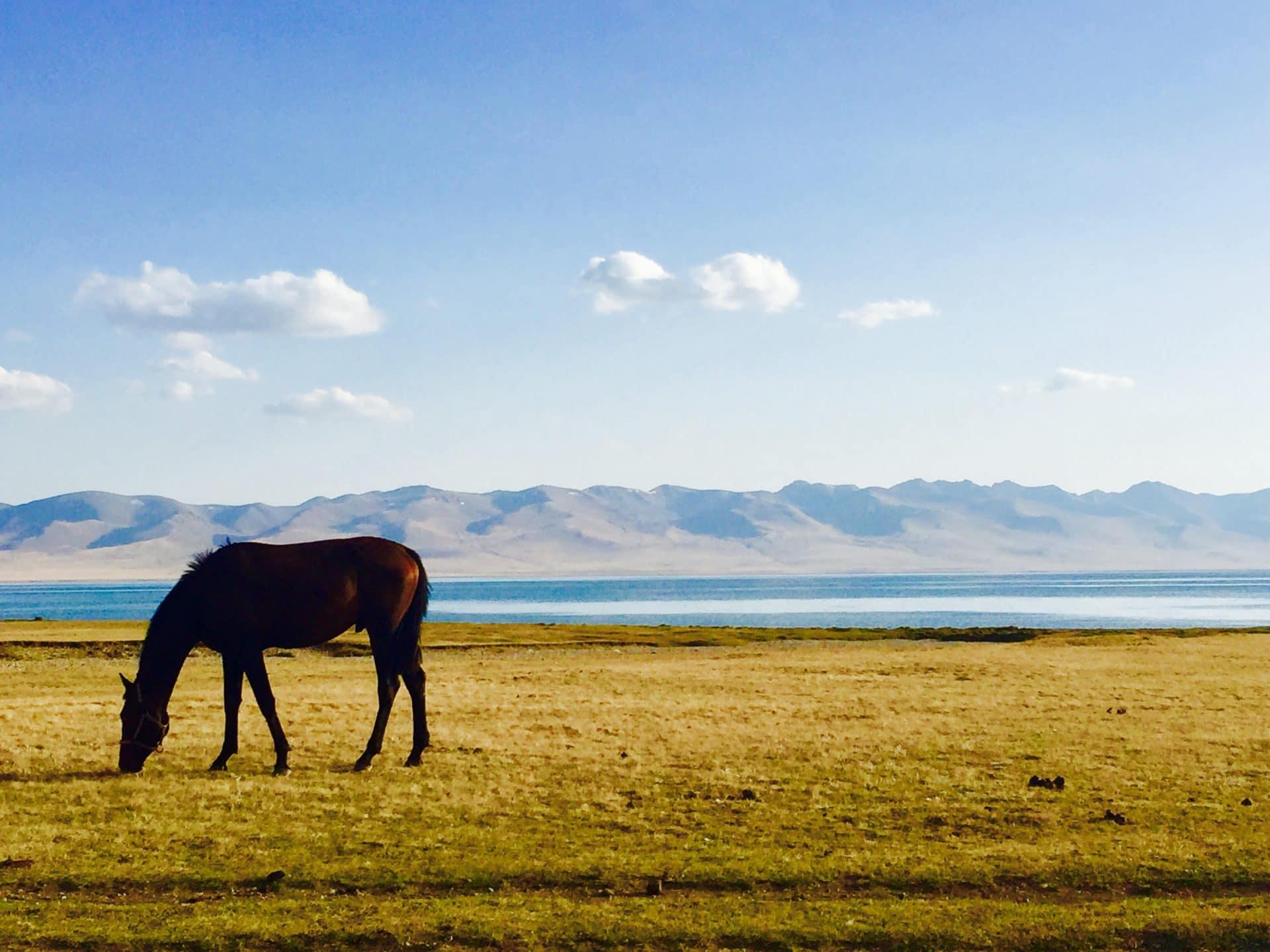 lac Song Koul voyage KIRGHIZISTAN