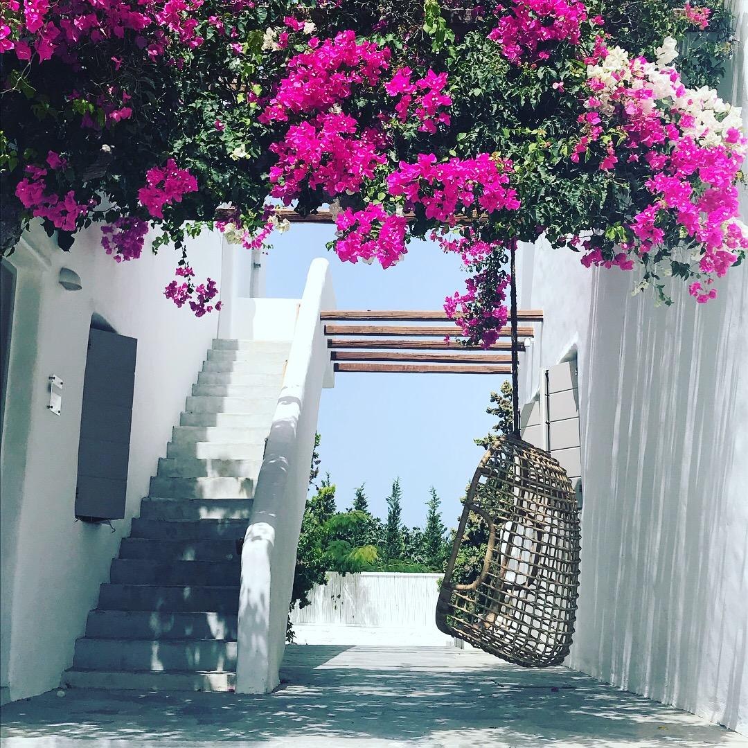 rues fleuries de Milos en Grèce