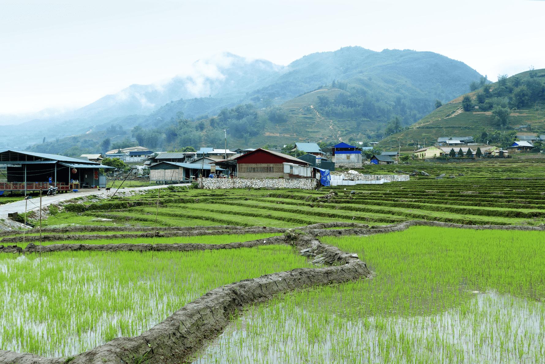 Sapa Nord Vietnam carnet de voyage