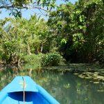 Siargao La Rivière enchantée de Hinatuan et Magpupungko