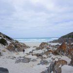 Kangourou Island Road Trip Australie
