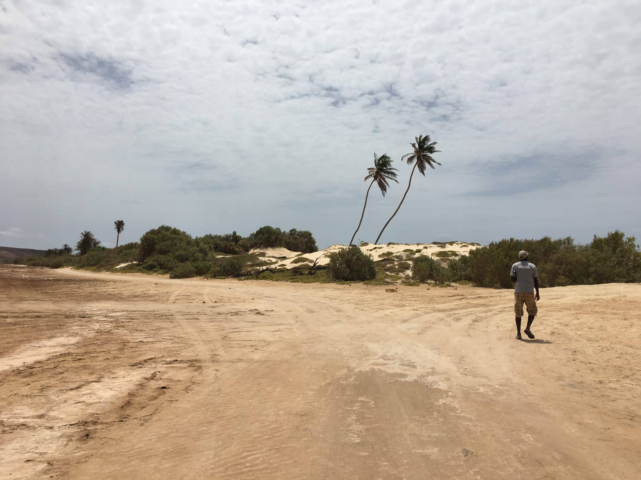 Boa Vista dunes