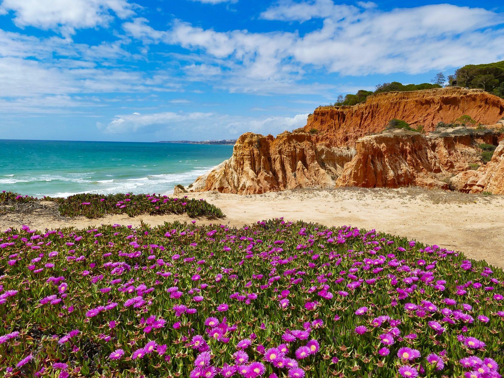 Praia da Falésia algarve portugal albufeira
