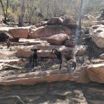 road-trip-australie-Flinders Ranges National Park