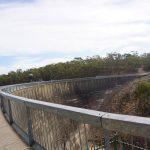 road-trip-australie-Barossa Valley - Seppeltsfield