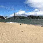 san francisco lieux d'intérêt Golden Gate Bridge Vue plage