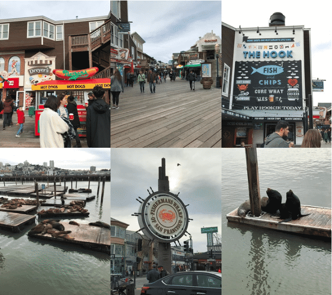 San francisco Lieux d'intérêtsFisherman's Wharf