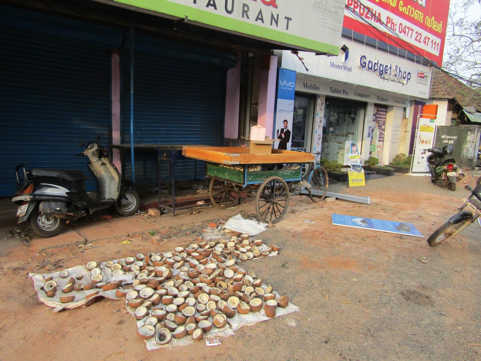 noix de coco allepey road trip inde