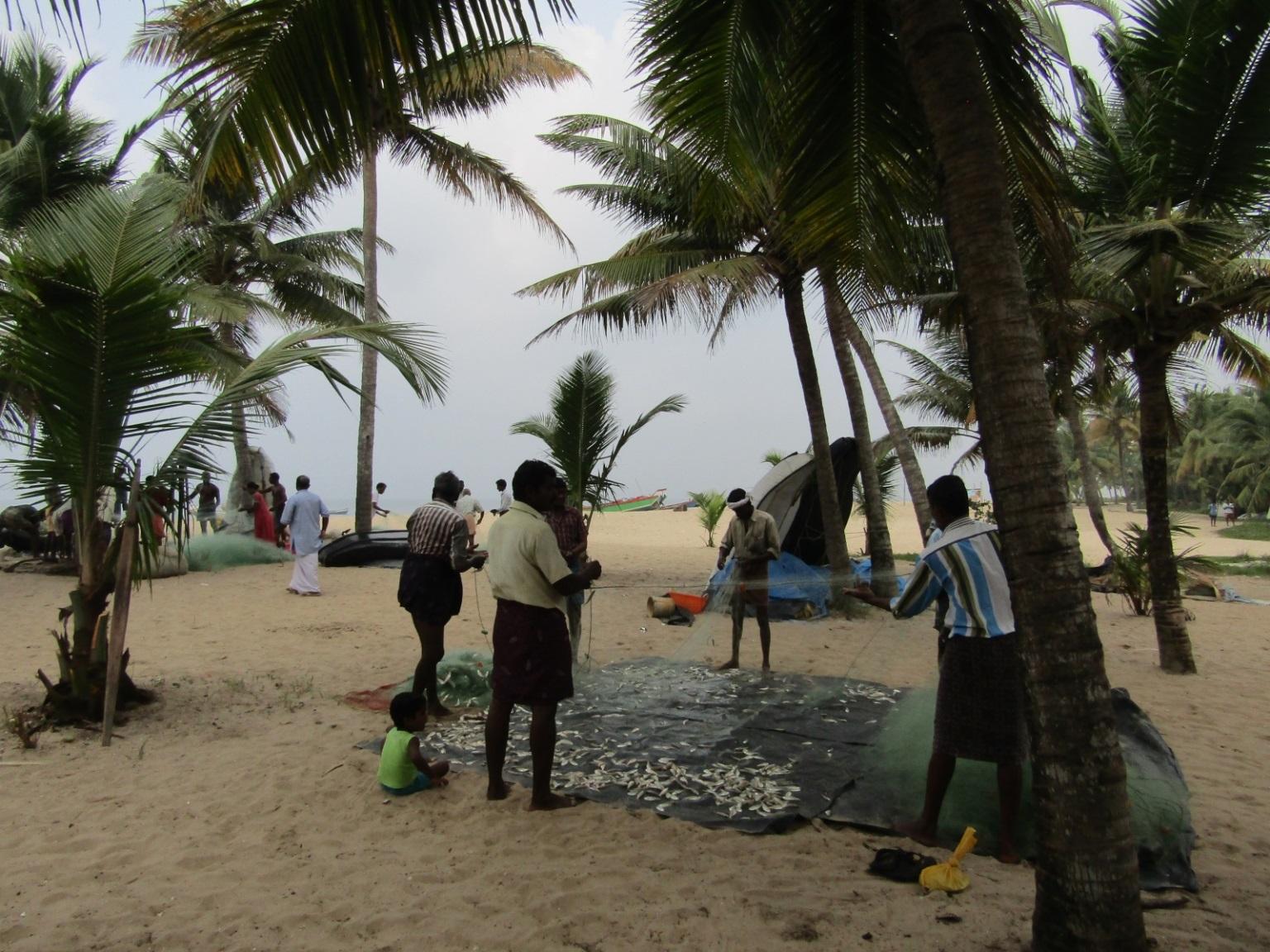 road trip inde marari beach