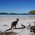 Cape Le Grand National Park - Lucky Bay road trip australie