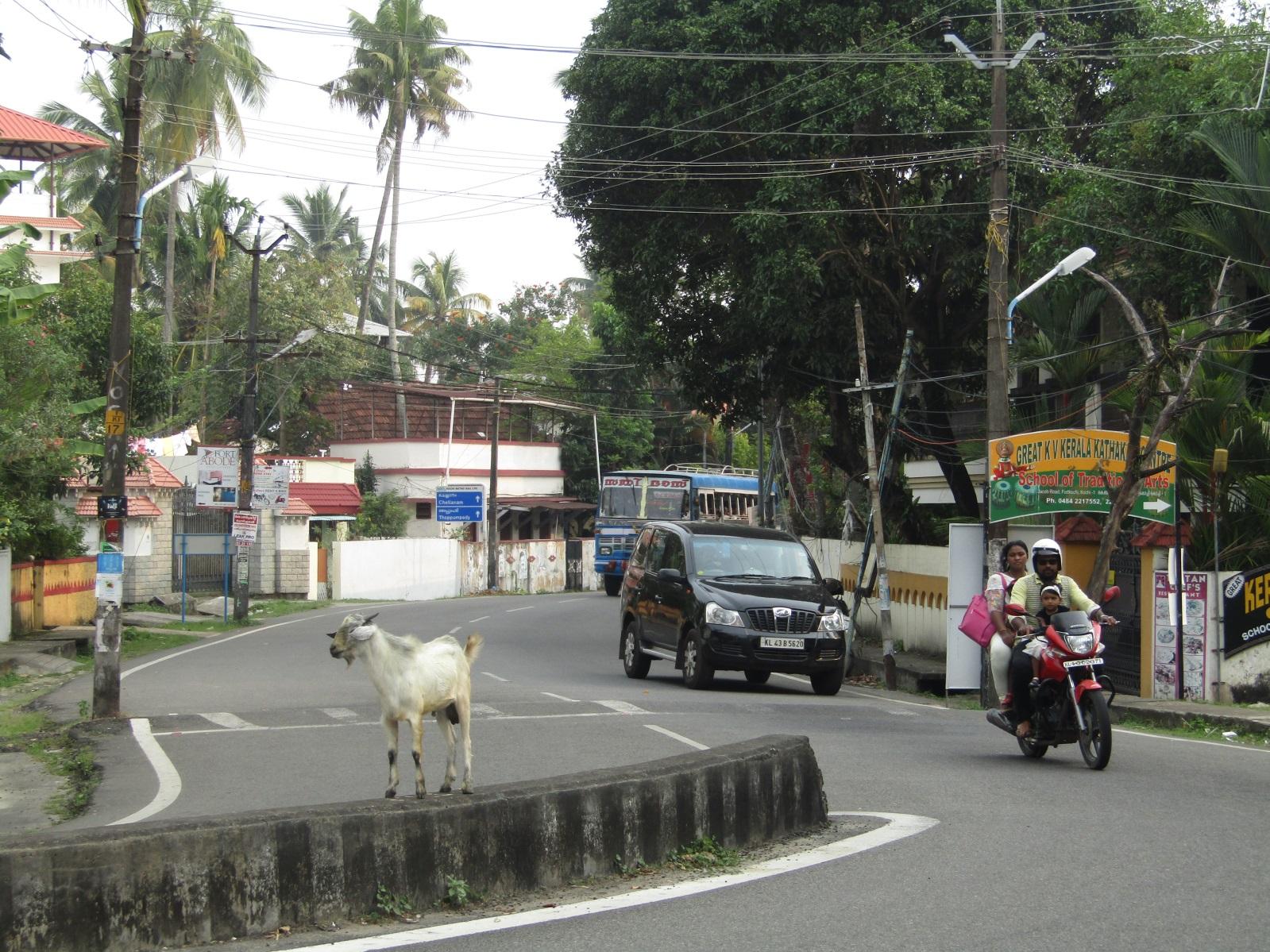 centre ville cochin