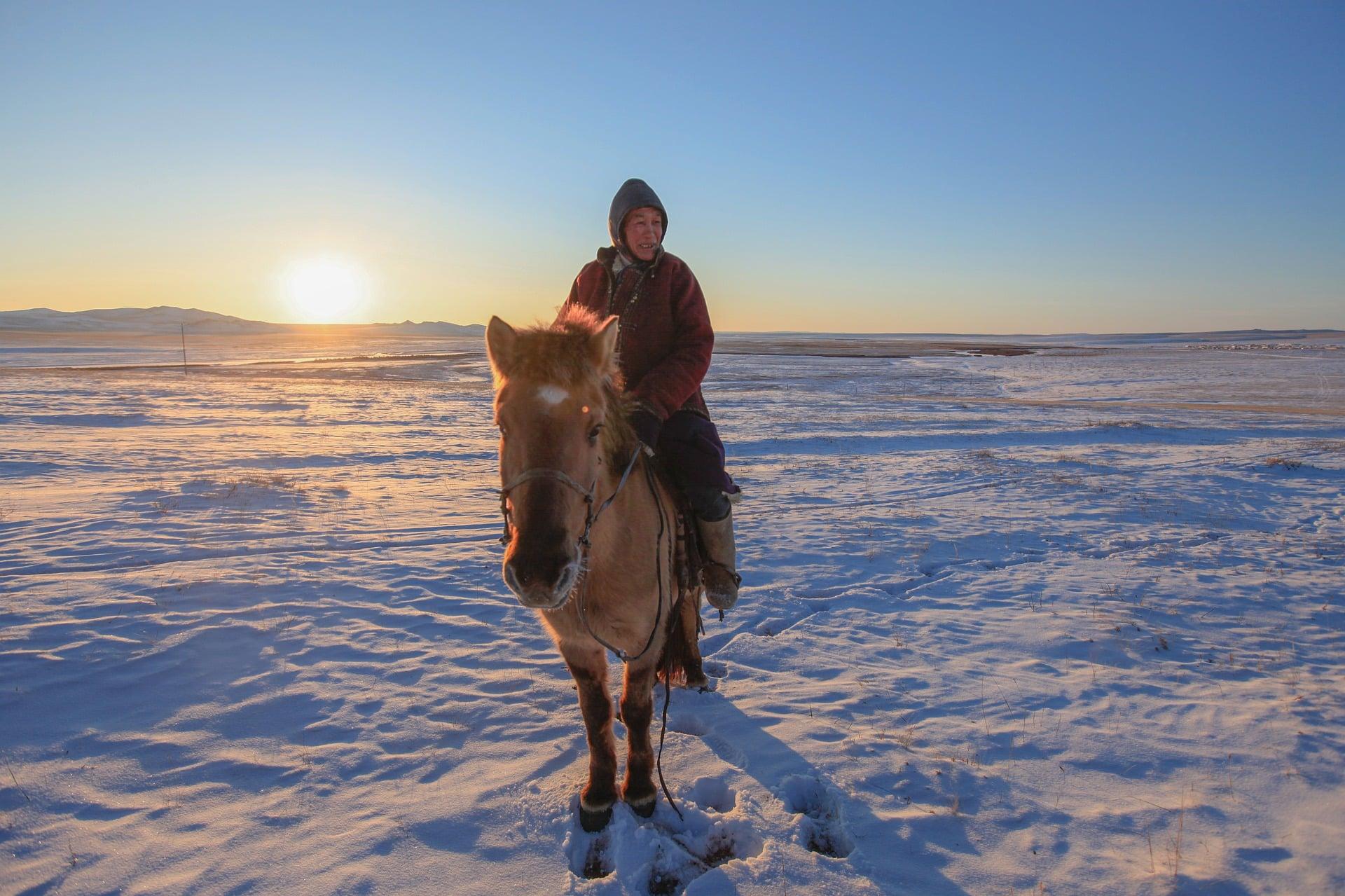 tourisme vert Mongolie Cheval neige
