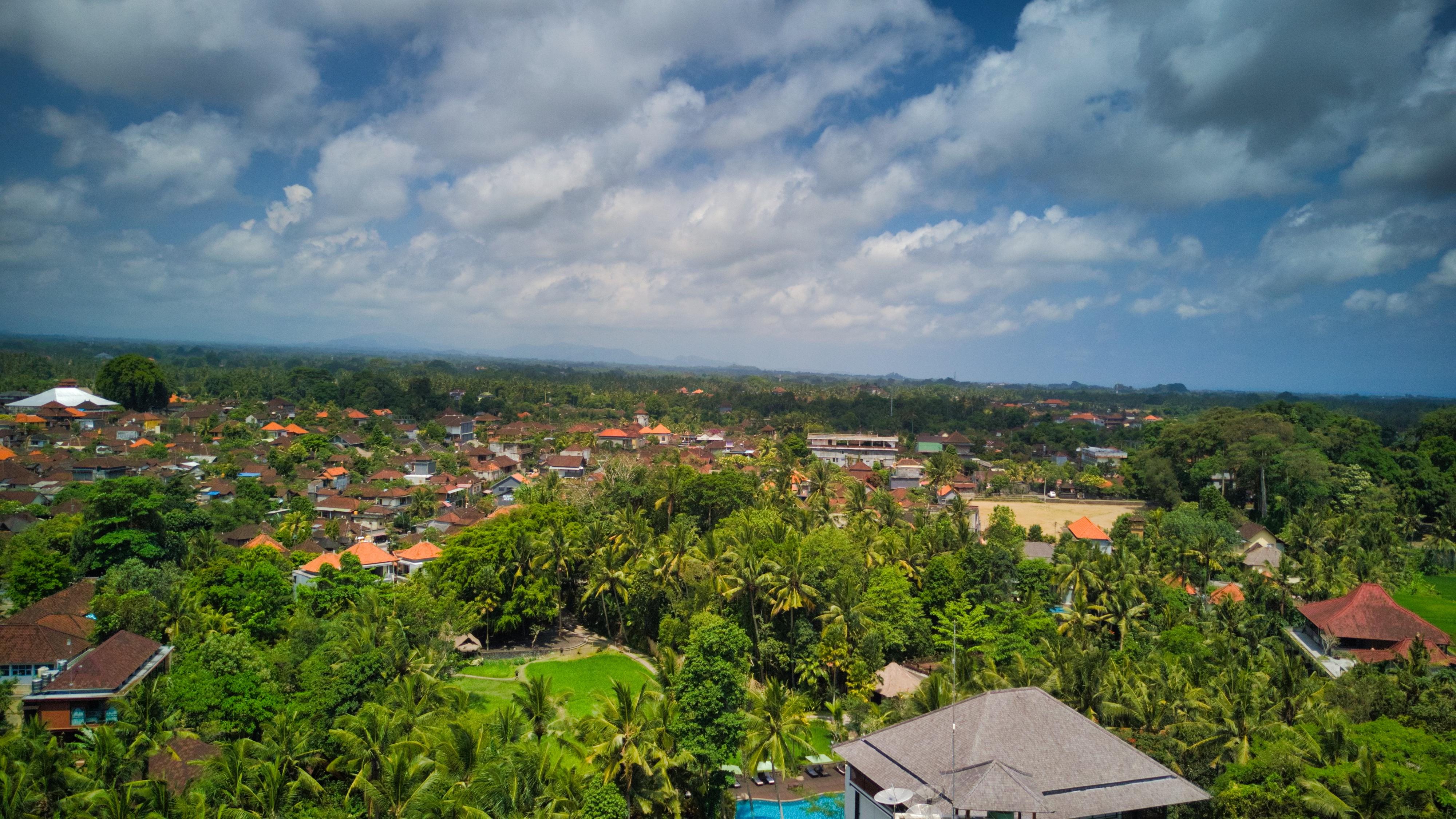 quartier ubud road trip indonesie
