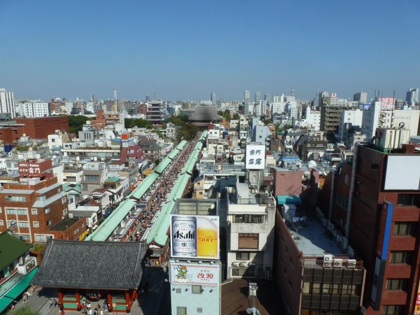 voyage au japon en famille vue temple tokyo