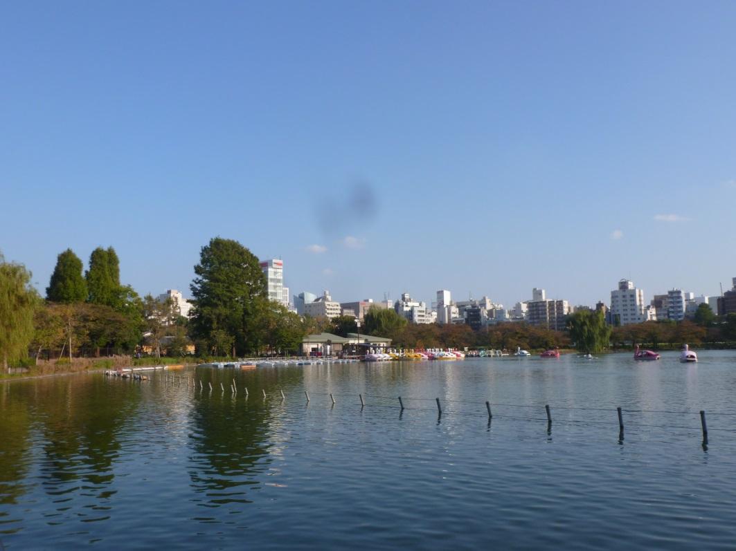 lac parc de ueno tokyo