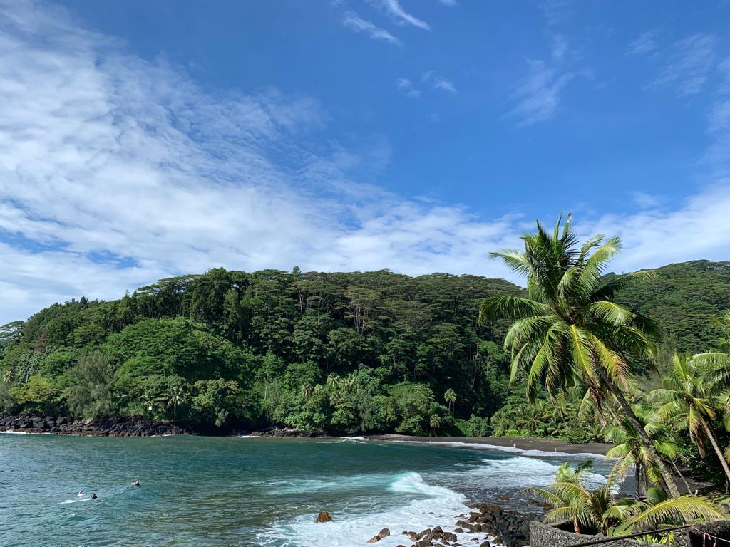 Tahiti souffleur iles polynesie française