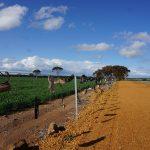 Sur les routes de l'Outback