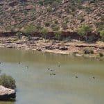 Kalbarri est son Parc National