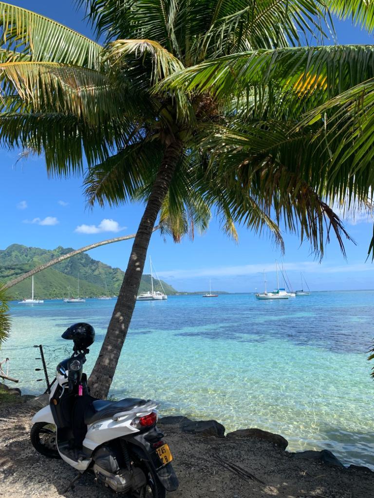 sccoter moorea baie de cook iles polynesie française