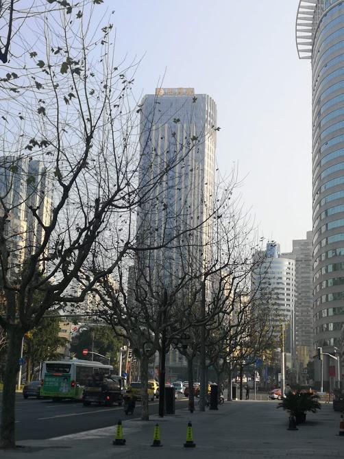 rue du quartier de Xuhui à Shanghai