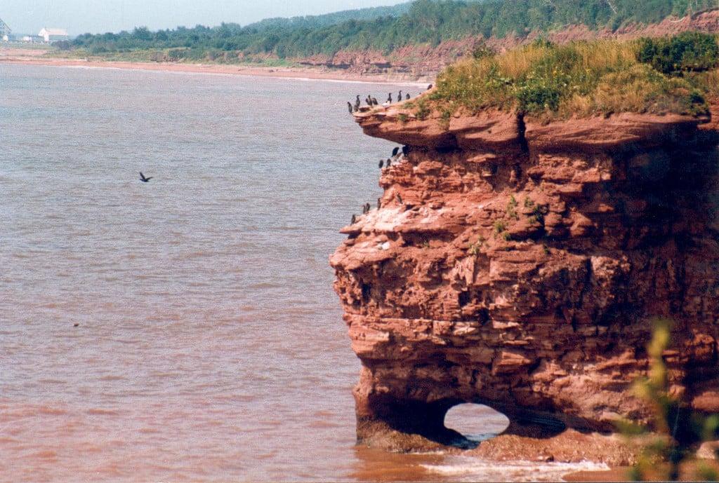 Le sentier de la Pointe aux Corbeaux