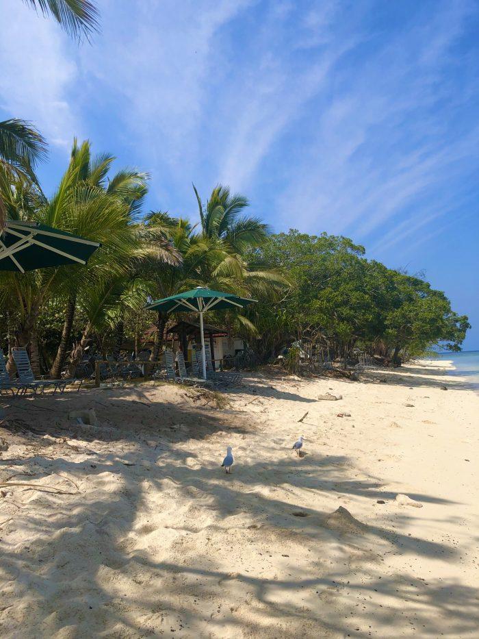 plage de l'îlot amédée