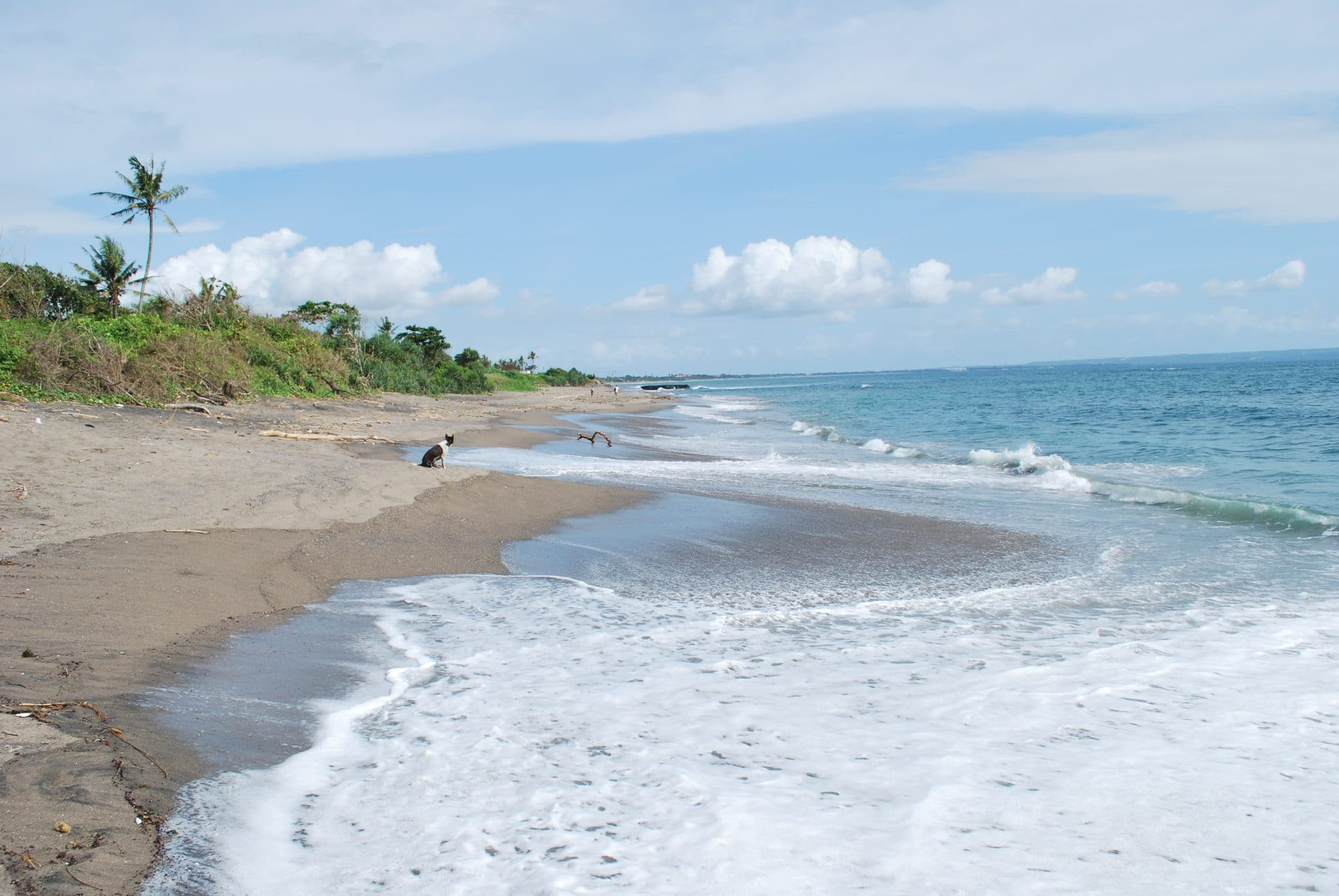 La plage de Canggu Beach
