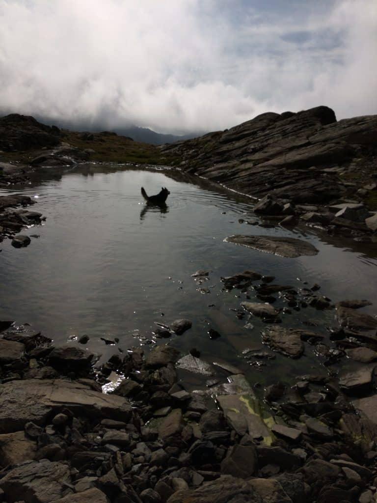 chien lac