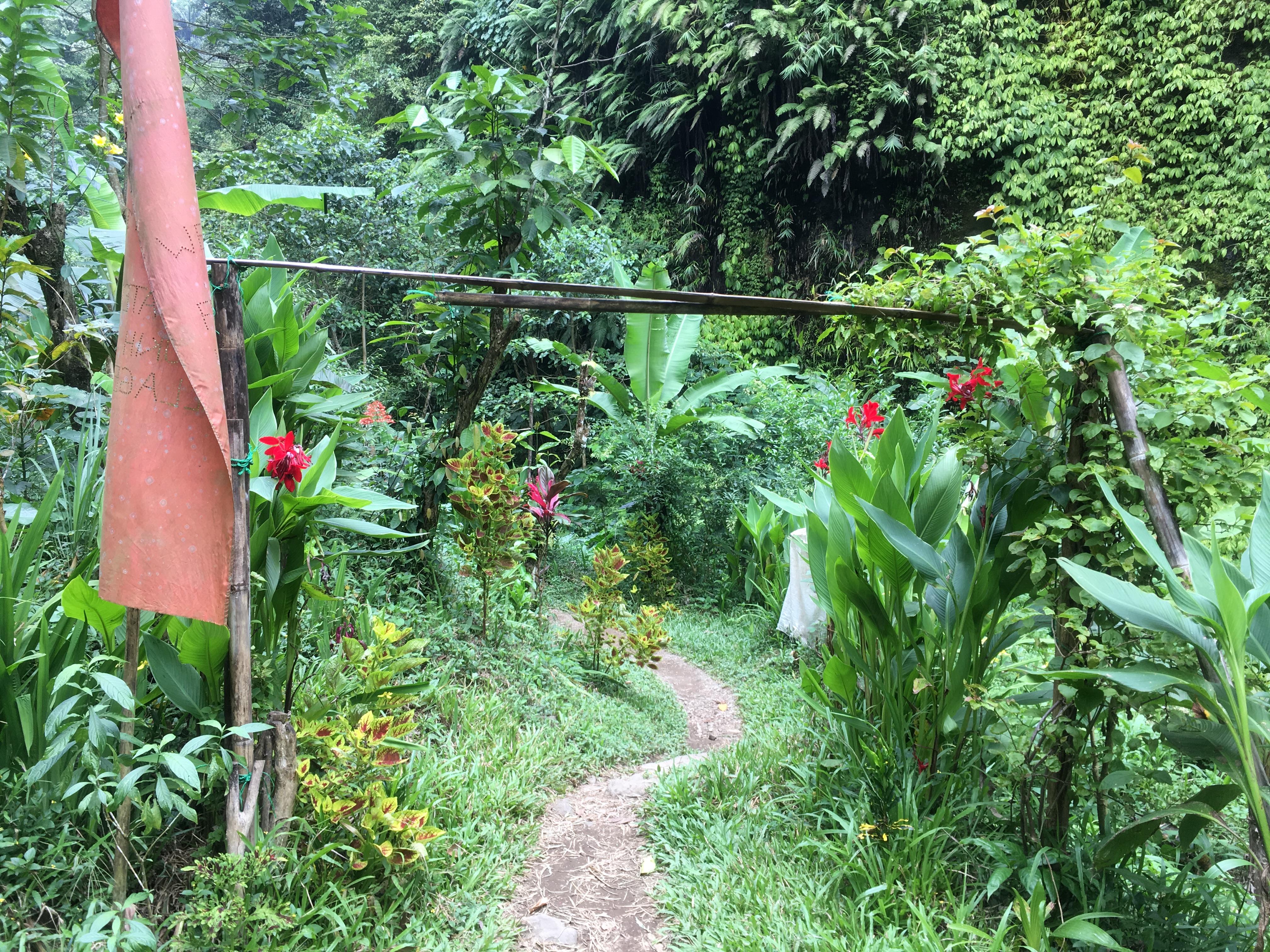 Chemin pour aller aux autres cascades