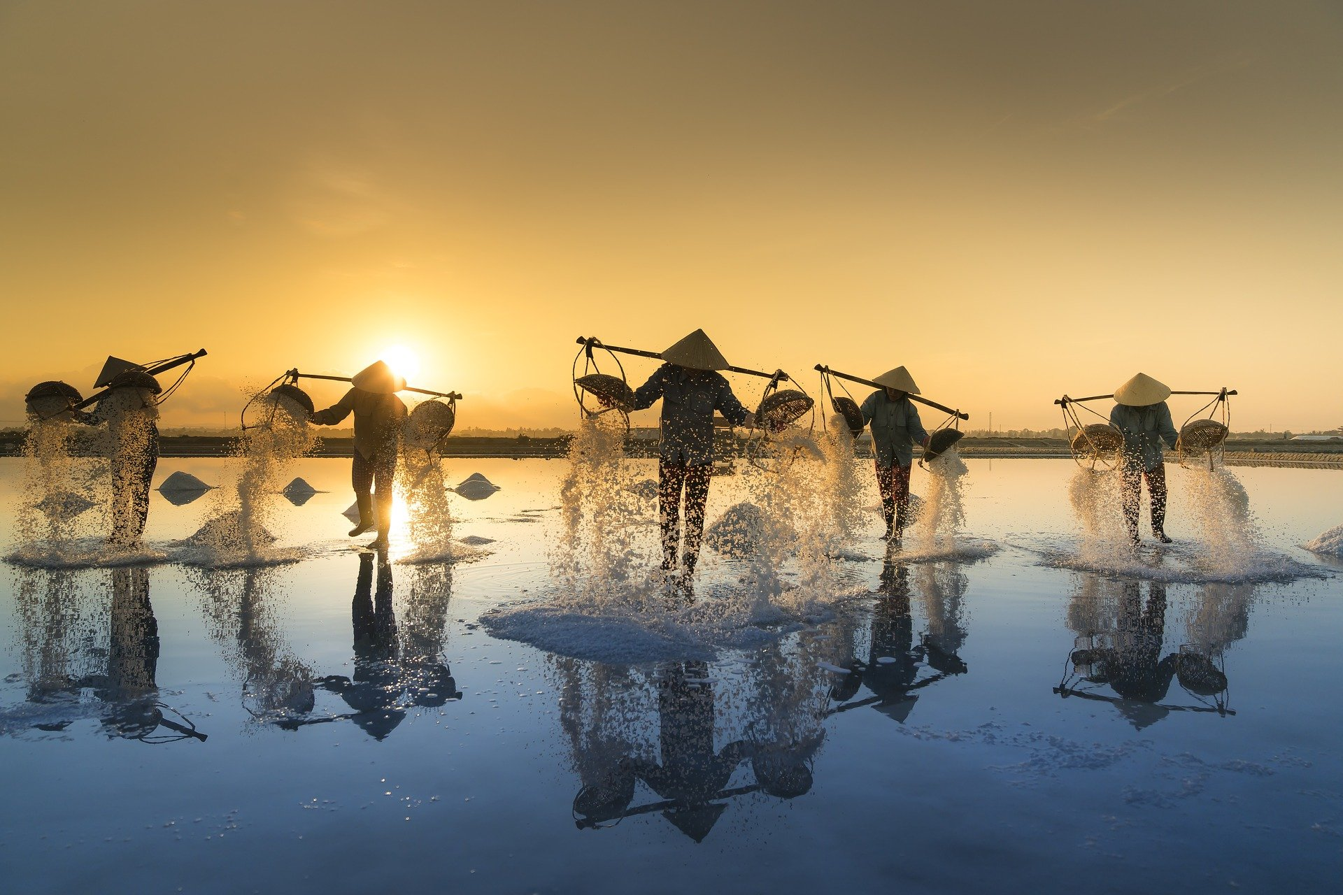 vietnam-agriculture