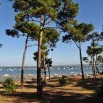 La-Pointe-aux-Chevaux