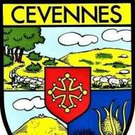Bushcraft_Cevennes_Fr